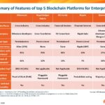 Enterprise Blockchain Options: What Can They Do For Your Enterprise?